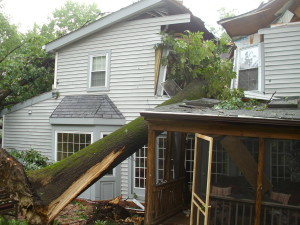 Tree on House