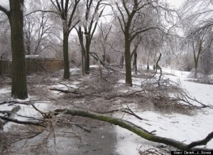 ice strom damage