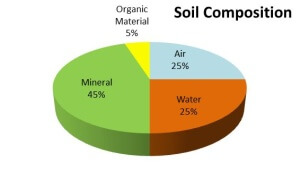 poor soil composition