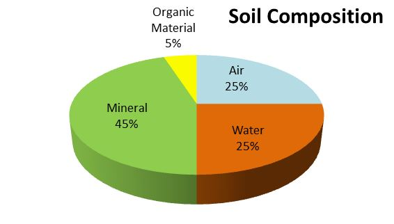 Poor soil composition is killing your tree how to fix it for Soil composition definition
