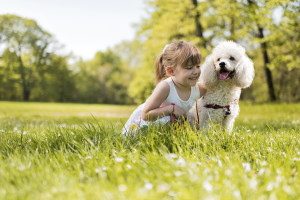 Mosquito treatment safe for dogs, Mosquito treatment safe for kids & babies!