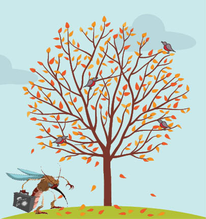 5 Most Important Fall Tree Care Tips