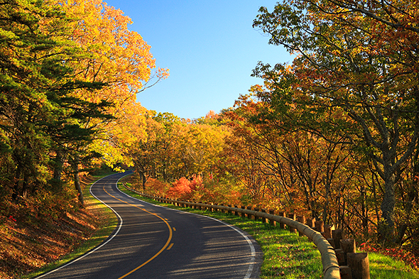 guide to fall colors - skyline drive