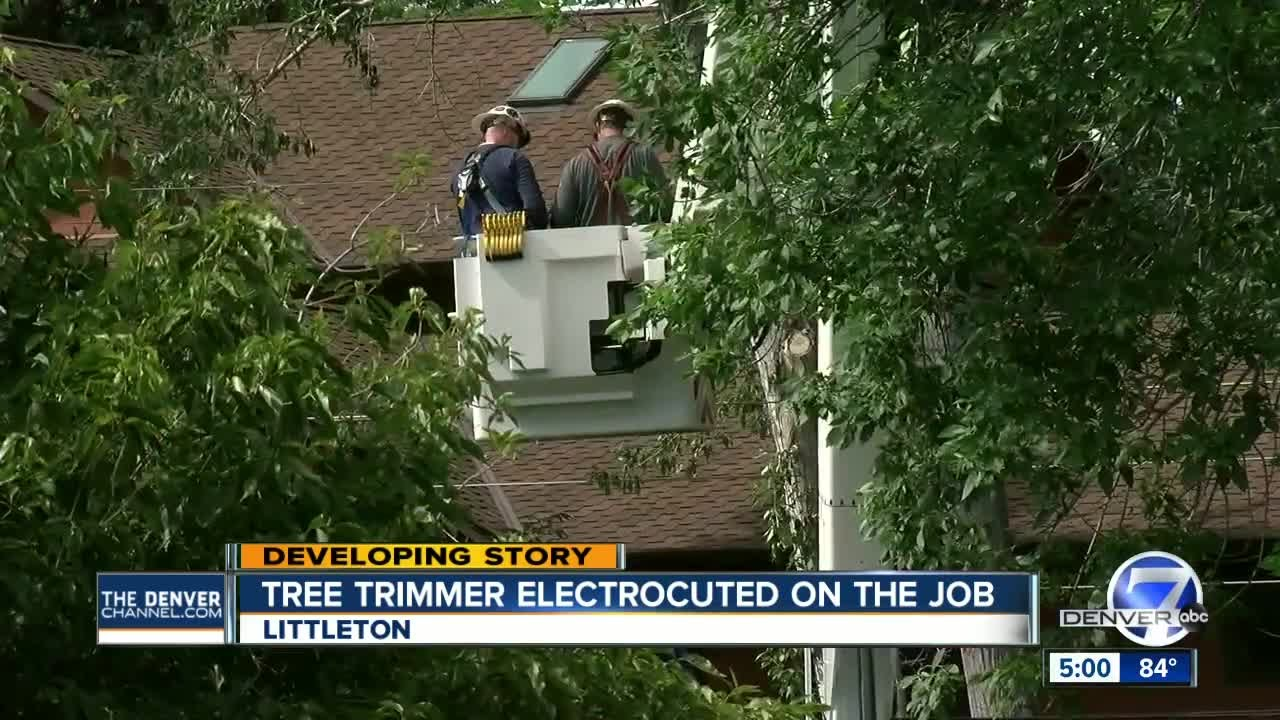 electrocution of tree worker in littleton