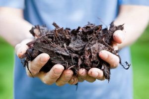 4 Essentials Of Soil Health 2