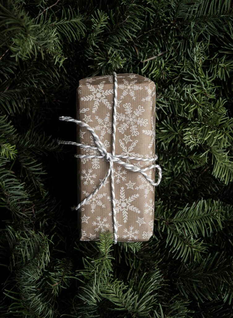 plant health care treatments are the best Christmas or holiday presents you can give this year