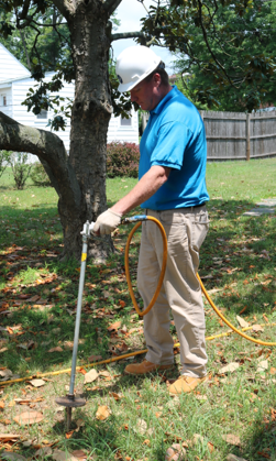 biostimulant treatment being applied by one of our tree doctors, treating root system for tree