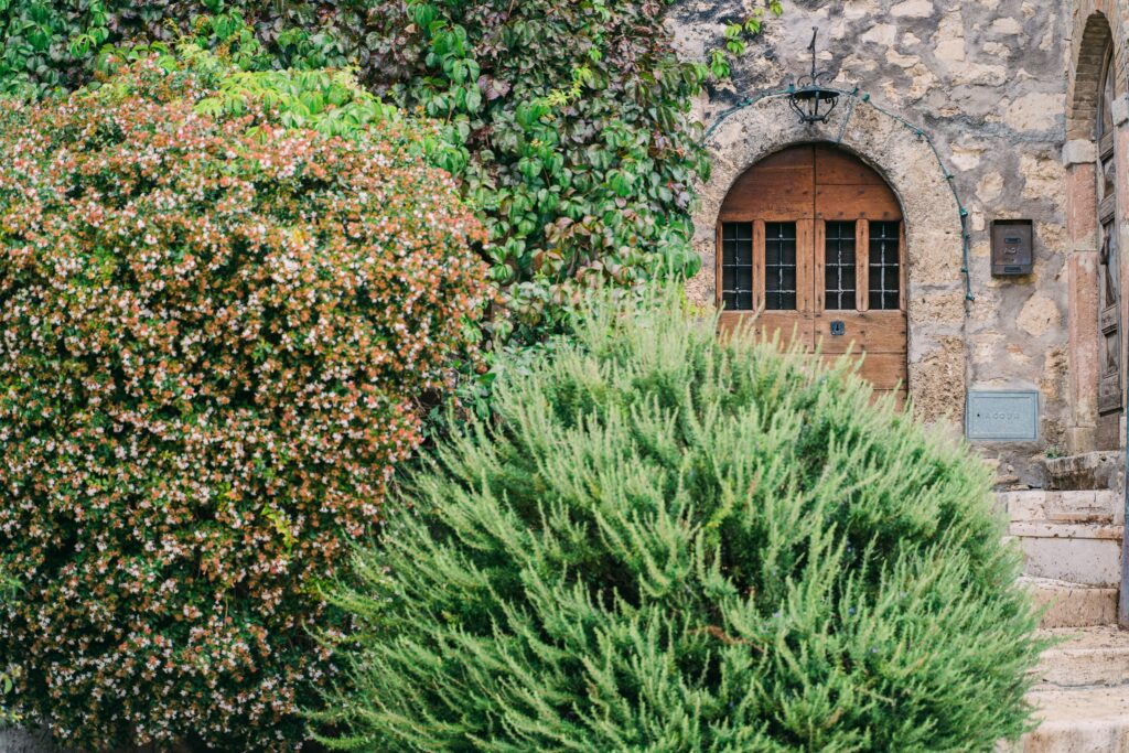shrubs or bushes by front door great candidates for plant health care treatments