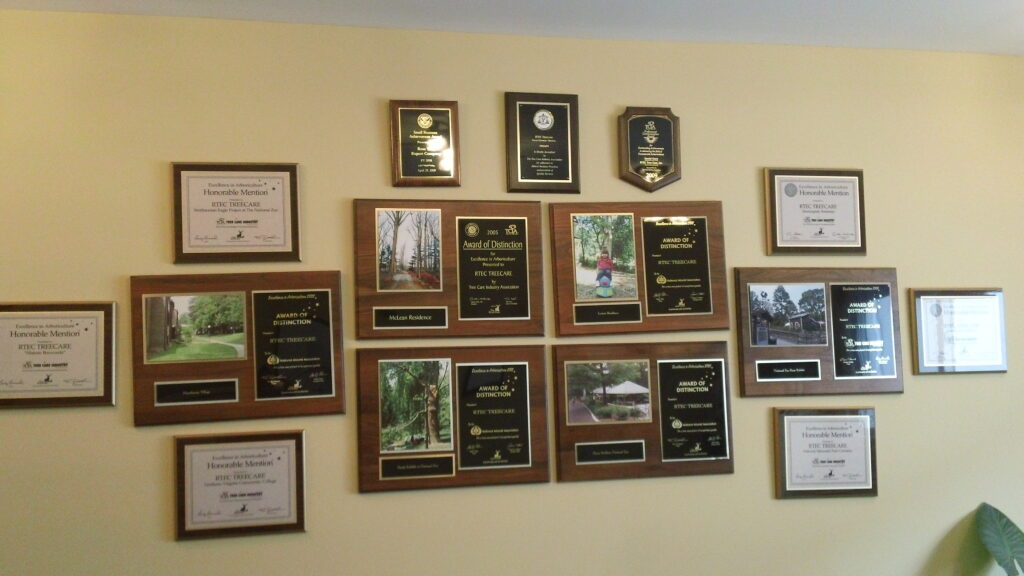Award plaques on wall showing RTEC's many achievements